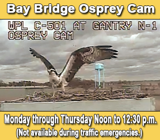 Bay Bridge Opspry Cam - Monday through Thursday Noon to 12:30 p.m.